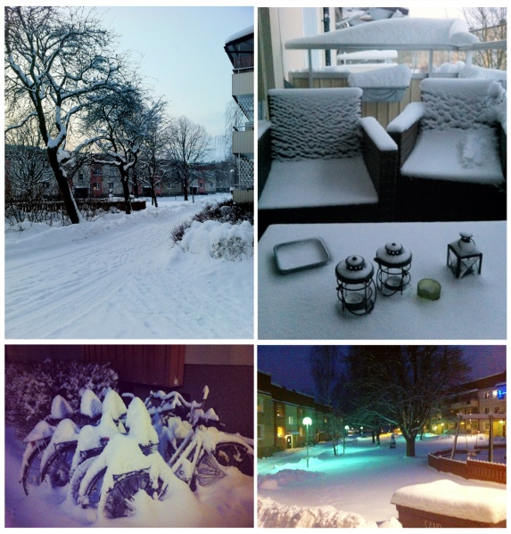 Swedish winter 2012