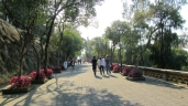 Walking around in Chapultepec