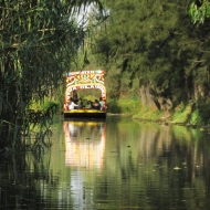 Trajineras at the Xochimilco canals