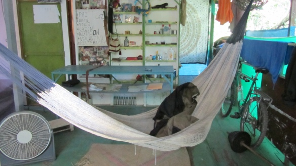 My bed in Palenque! A hammock :)