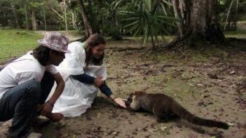 Feeding the rakoon :)