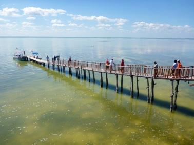 Bridge to the island of birds