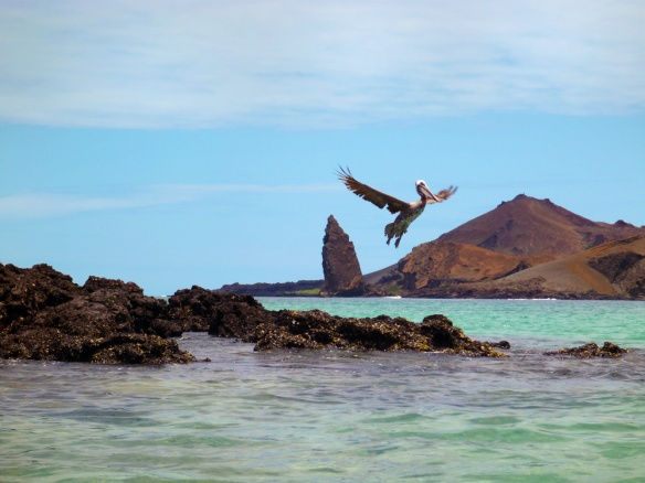 Flying in front of the Bartolome island
