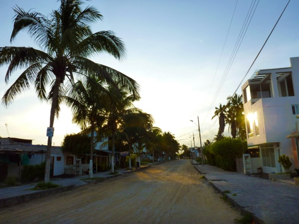The mainstreet in isabela... beautiful with sand!
