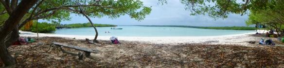 Panorama over Tortuga bay