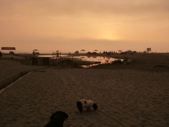 Sunset at the beach, you can see some tents there too..