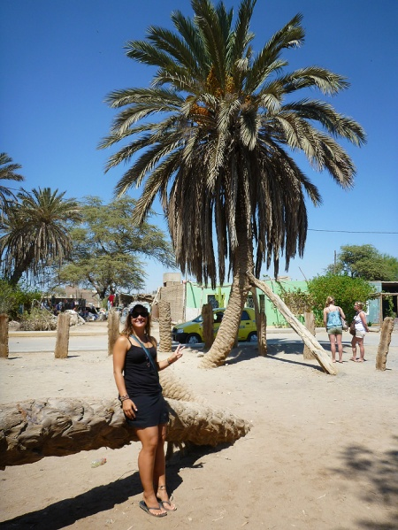 Me in front of the Palmera de siete Cabezas, Cachiche