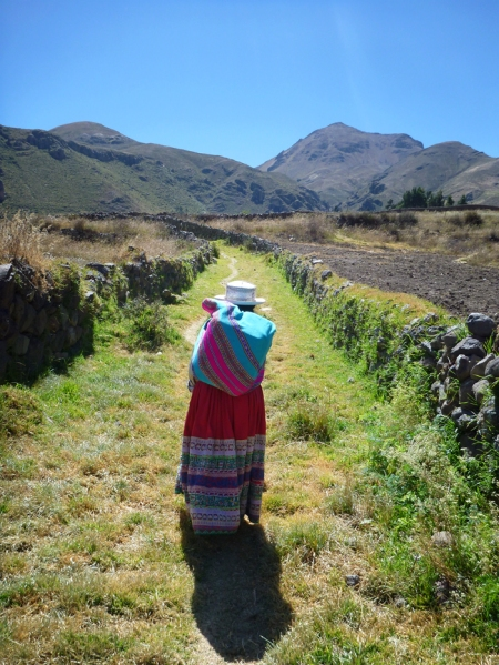 Walking with 20L of milk on her back in the aguayo.