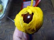 New fruit - llucuma. really heavy taste and texture!