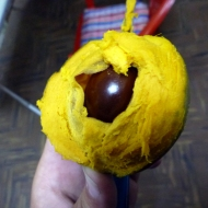 New fruit - llucuma. really heavy taste and texture!