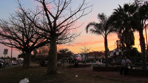Sunset and drunken trees siluettes by the costanera