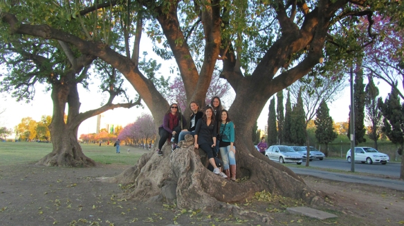 Group-picture in a really cool tree.