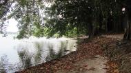 Lagoa.