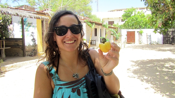 Holding a cajú fruit, the little thing there in the top is  a cashew-nut! Yeah!! One on every fruit!