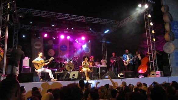 Elza Soares concert
