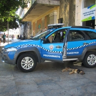 Police cars and tired dogs