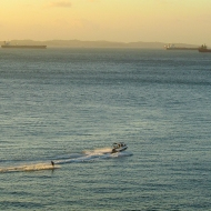 Water skiis in the sunset