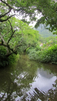 Rivers in the village
