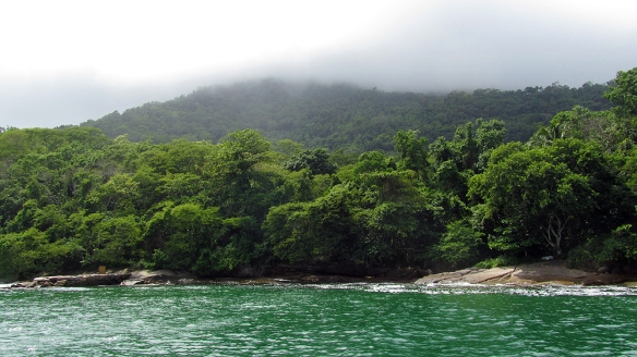 What it looks like along the whole coast of the island. Just loads of green forest!