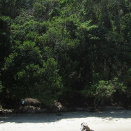 One of the beaches we visited