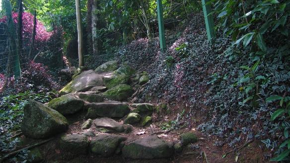 So beautiful hikes here