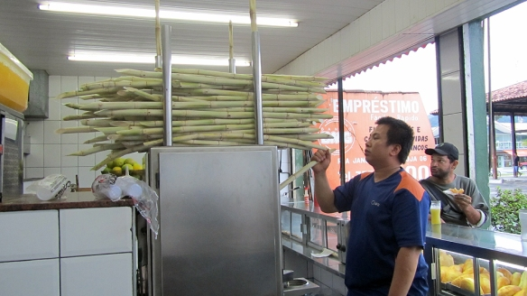 The sugarcane thingy