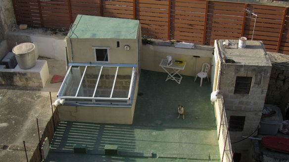 View over a roof, the dog and the cats starring at us. hehe.