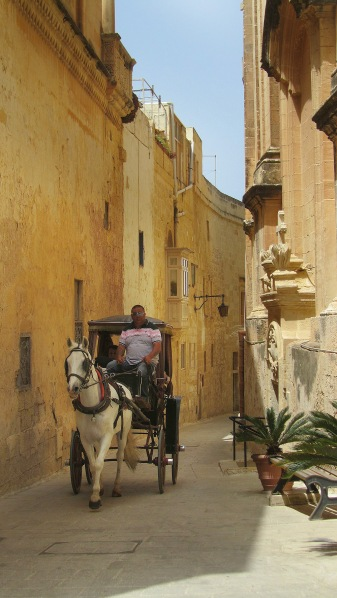 The transport in Mdina