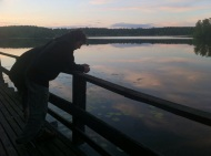 By the lake at night