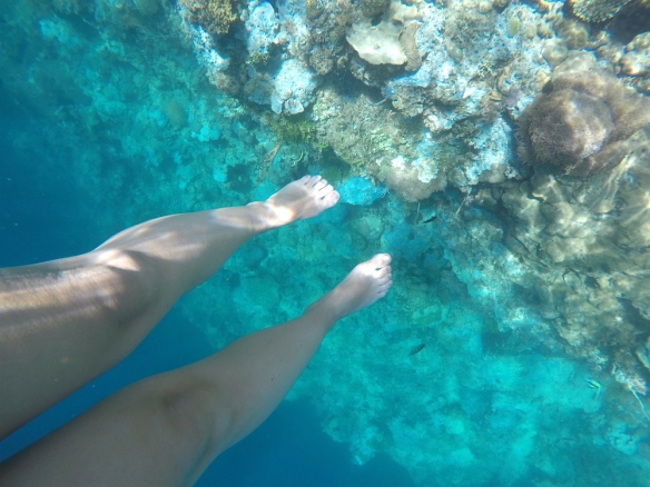 Snorkeling around Seven Pecados, much to see here!
