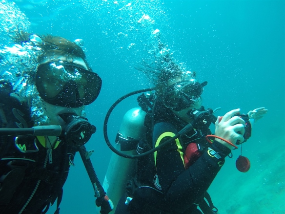 Dive-selfie ;)