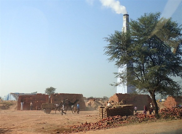 Brick factory with a camel (dromedar probably though)