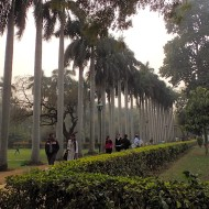 The lodi gardens