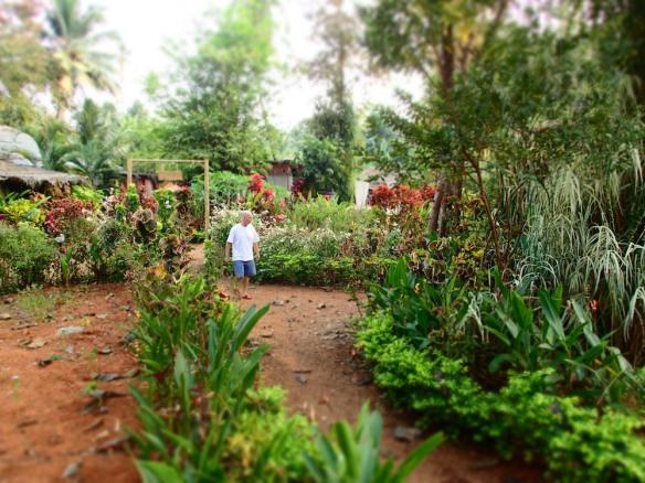 Scott taking a walk through the Ayurveda gardens