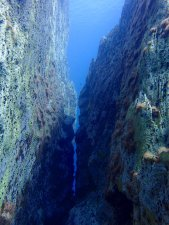 Rock formations in barracuda lake, it looks like it could be above water, with blue sky instead of blue water!