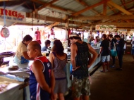 Shopping fish at the market!