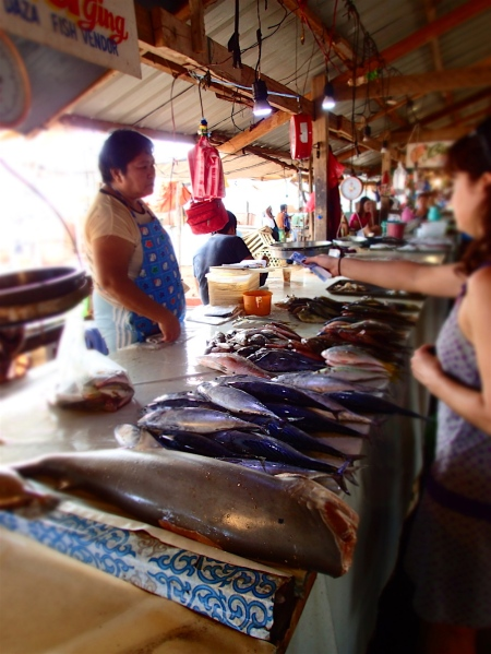 at the market, choosing fish (uh what a smell!)