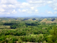 The chocolate hills