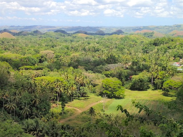 View over the chocolate hills and the nature around Bohol