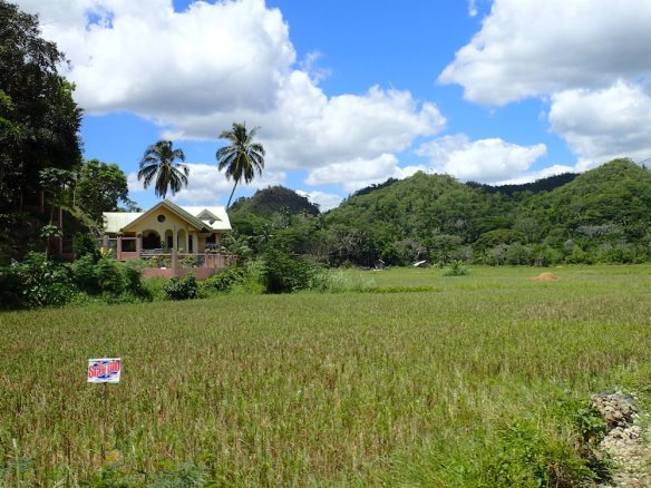 Around bohol, huge houses and big farm lands