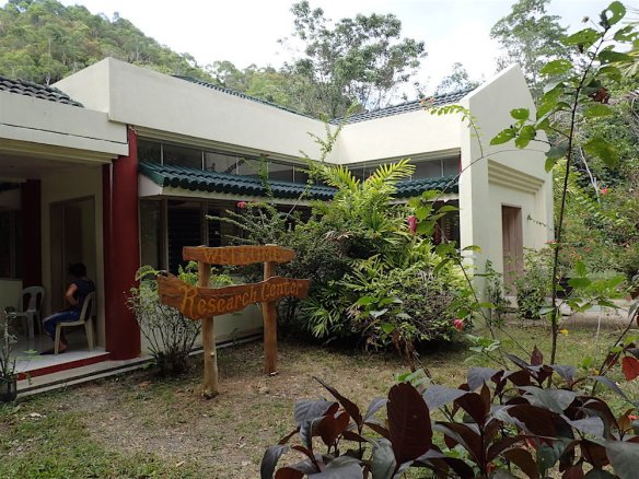 The tarsier sanctuary in Corella, or the research center.