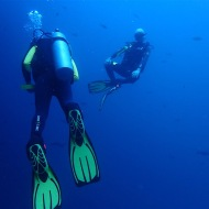 Diving and doing yoga ;)