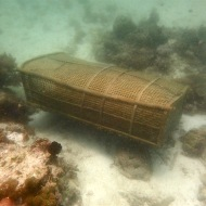 Well, at the bottom of the sea we found this wooden cage. apparently is for fishing!
