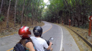 Driving the scooter in the mahogny man made forest